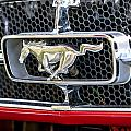 Mustang Grill by Melinda Ledsome