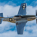 Mustang Making A Pass by Mike Watts