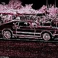 Mustang Rose by Bobbee Rickard