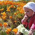 My First Poppy by Laura Sapko