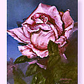 My First Rose by Lynne Wright