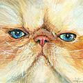 My Happy Face by Donna Tucker