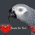 My Heart Beats For You by Donna Proctor
