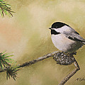 My Little Chickadee by Marna Edwards Flavell
