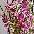 My Magnolias Bliss by Sherry Harradence