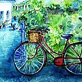 My Red Bike  by Trudi Doyle