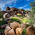 My Rock City by Debra Martz