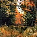 My Secret Autumn Place by Michael Swanson