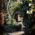 My Secret Garden by Evie Carrier