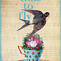 My Time To Fly by Peggy Collins