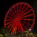 Myrtle Beach Sky Wheel by Pat Walsh