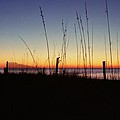 Myrtle Beach Sunrise by Allen Beatty