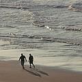 Myrtle Beach Walking Buddies by Gail Matthews