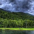 Myrtle Creek 1 by Lee Santa