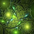 Mysterious Lights by Gabiw Art
