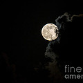 Mystery Moon by Rene Triay Photography