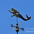 Mystical Mermaid by Al Powell Photography USA
