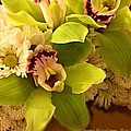Mystical Orchid  by Georgina Mizzi