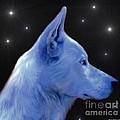 Mystical Wolf by Maria Urso