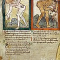 Mythical Beasts, 11th Century Artwork by British Library