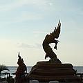 Naga - Phuket Thailand - 01131 by DC Photographer
