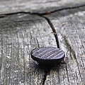 Nail And Old Wood by Guna Andersone