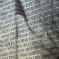 Names On A Wall by Cindy Manero