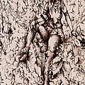 Nan Dungortheb Detail by Rachel Christine Nowicki