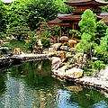 Nan Lian Garden, Diamond Hill, Kowloon by Jenny Jones