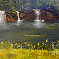 Nandroy Falls In Queensland by Pamela  Meredith