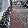 Nantucket Street Scene by Susan Wyman