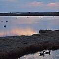 Nantucket Sunset by Susan Wyman