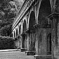 Nanzenin Temple Aqueduct by Zina Zinchik