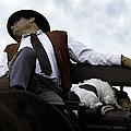 Nap Time by Wayne Wood