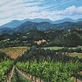Napa Valley Vineyard by Penny Birch-Williams
