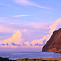 Napali Coast In Kauai by Les Palenik
