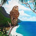 Napali Pueo by Ethan Foxx