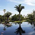 Naples Botanical Garden  3083 by Terri Winkler