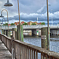 Naples Florida Waterfront by Timothy Lowry