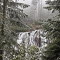 Narada Fall Mt Rainier II by Greg Reed