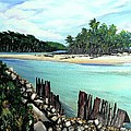 Nariva River And Cocos Bay by Karin  Dawn Kelshall- Best