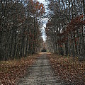 Narrow Path On Recovery Road by Neal Eslinger