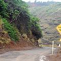 Narrow Road - North Maui by Amy Fose