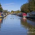 Narrowboats by Louise Heusinkveld