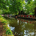 Narrowboats Moored On The Wey Navigation In Surrey by Louise Heusinkveld