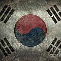 National Flag Of South Korea Desaturated Vintage Version by Bruce Stanfield