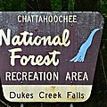 National Forest Recreation Area by Tara Potts