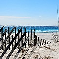 National Seashore by Nancy Wolfe