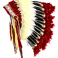 Native American Headdress by Michael Vigliotti