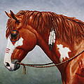 Native American War Horse by Crista Forest